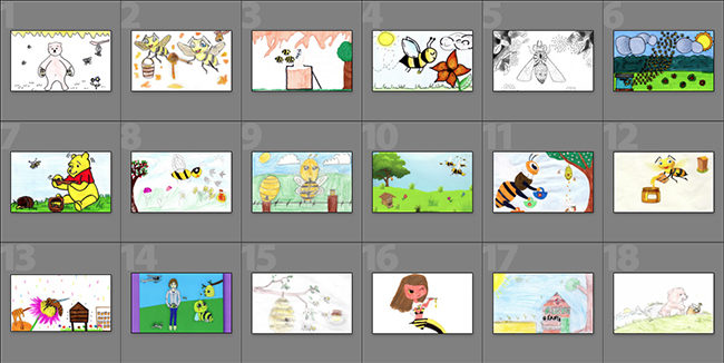 vignette_illustrations.jpg